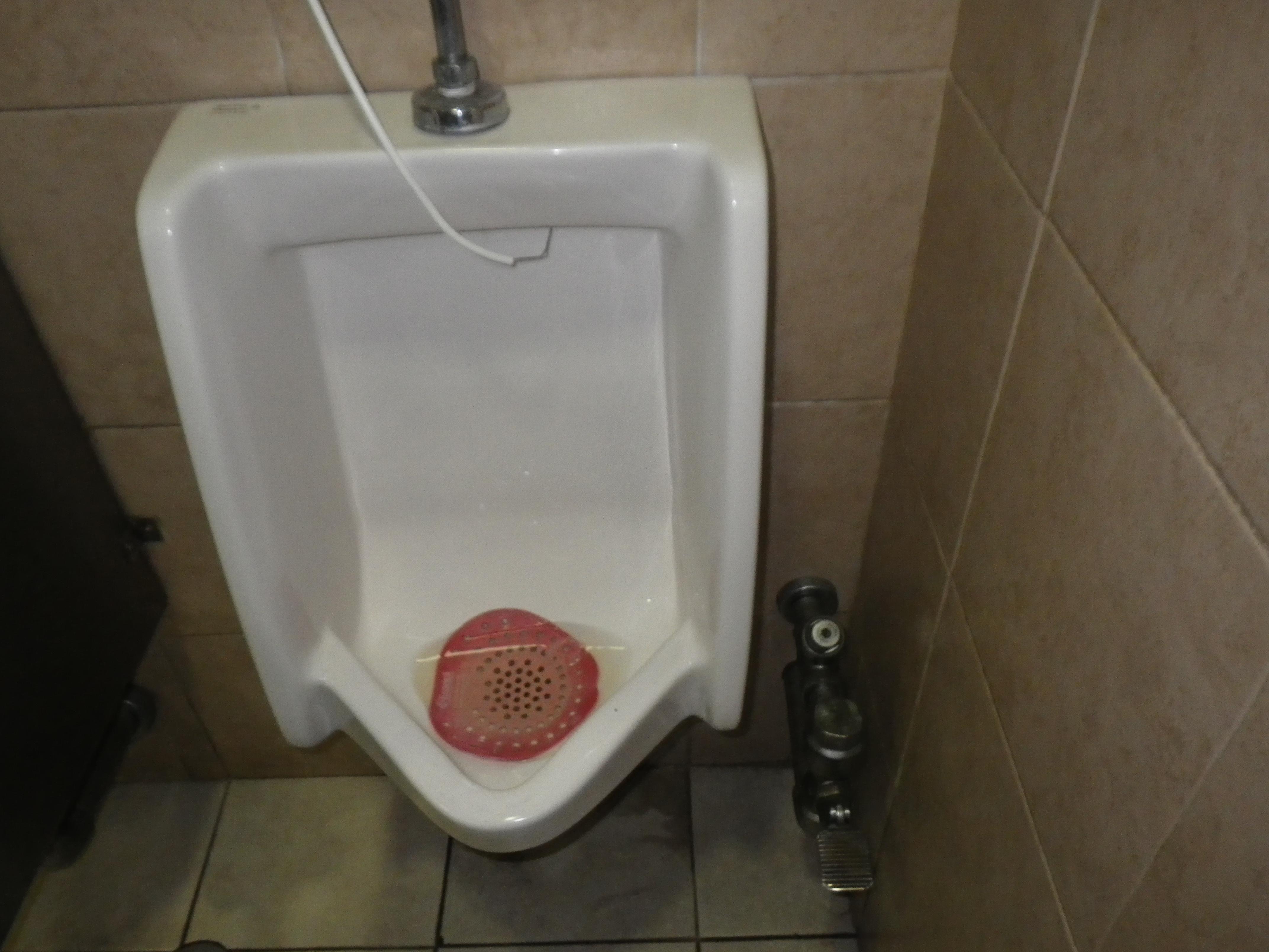 Centro Maya mall step flush urinal
